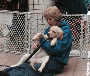 restraining a puppy 2